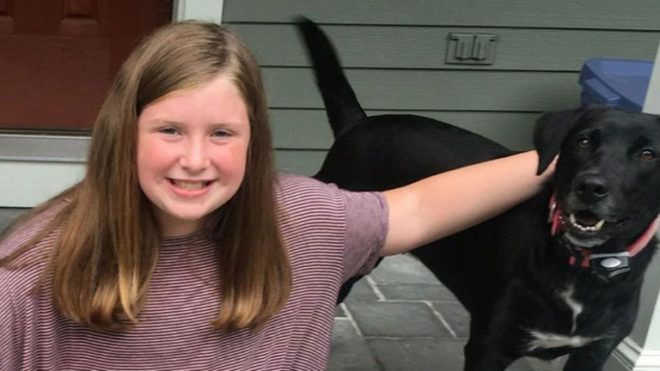 száz kutyát megmentett a 12 éves kislány