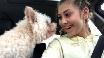 Így telt az utolsó napja a 18 éves kutyának