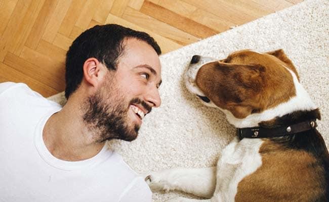 10 jel, hogy igazi kutyabolond vagy