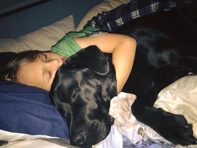 Az anya a kutya vicsorgására ébredt fel