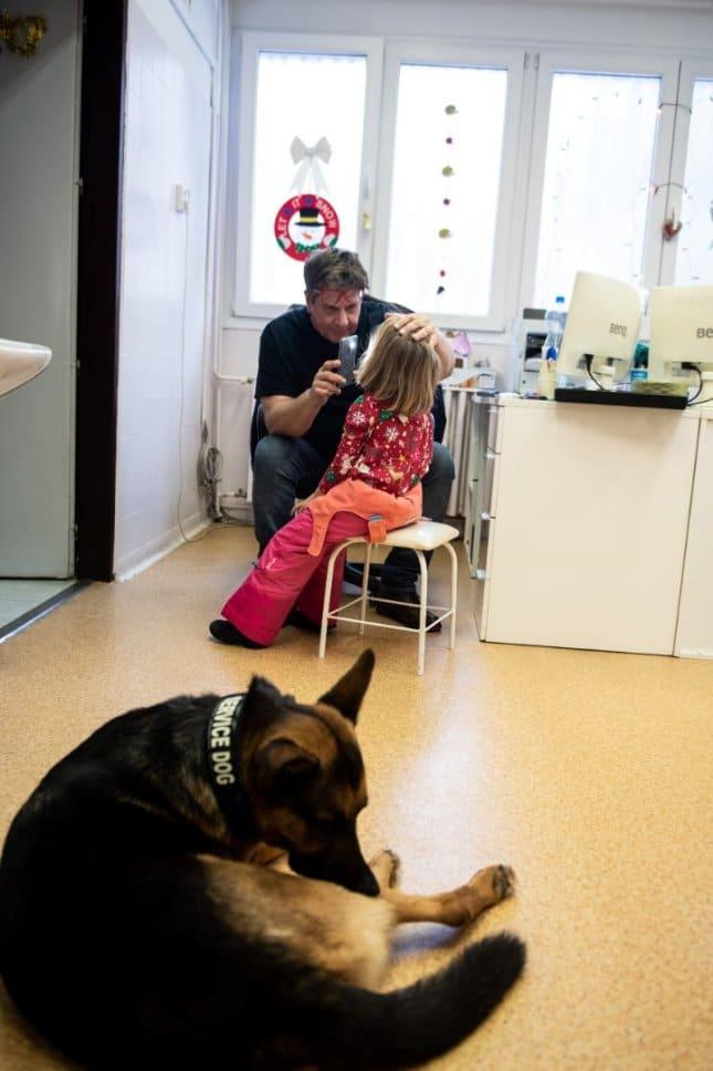 Gazdájával együtt gyógyít dr. Rex, a német juhászkutya