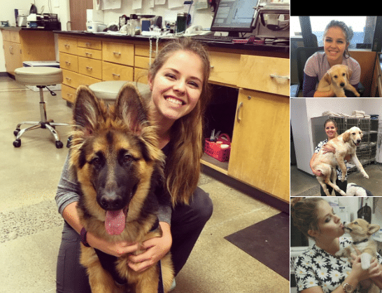 Kisbabának álcázva vitte be kórházban fekvő nagymamának a kutyáját