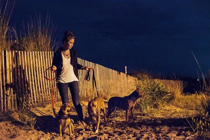 Utolsó nyaralással búcsúztak gazdái a rákbeteg kutyustól