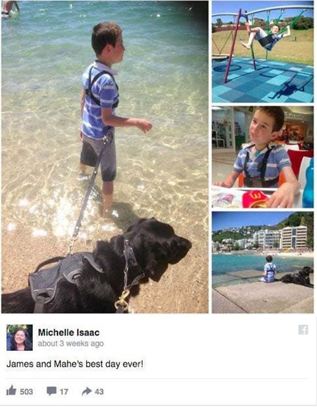 em hagyta magára az autista kisfiút a kutya