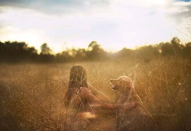 Csodálatos képeket készített a gazdi kutyája emlékére