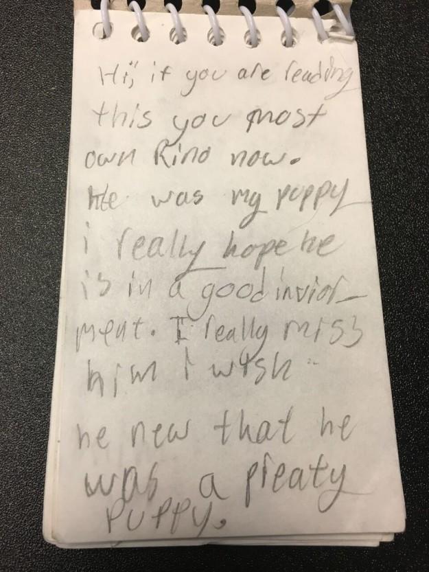 Szívszaggató levéllel adták menhelyre a kutyájukat