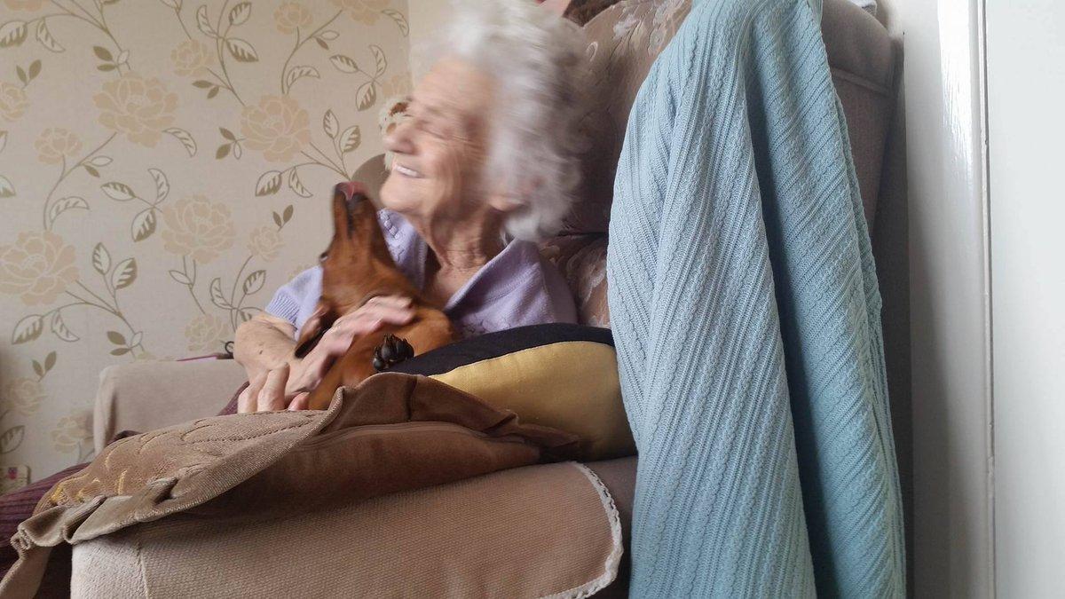 tacskó segít az alzheimeres néninek