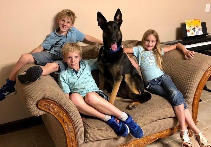 minden gyermek mellé kell egy kutya