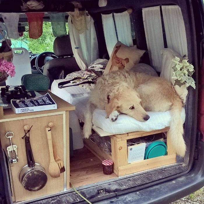 Felújította kisbuszát, hogy kutyájával bejárhassák a világot