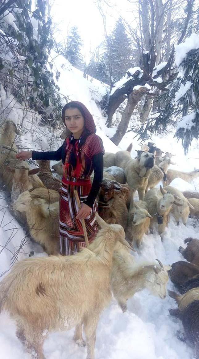 hátán cipelte haza a kecskegidát