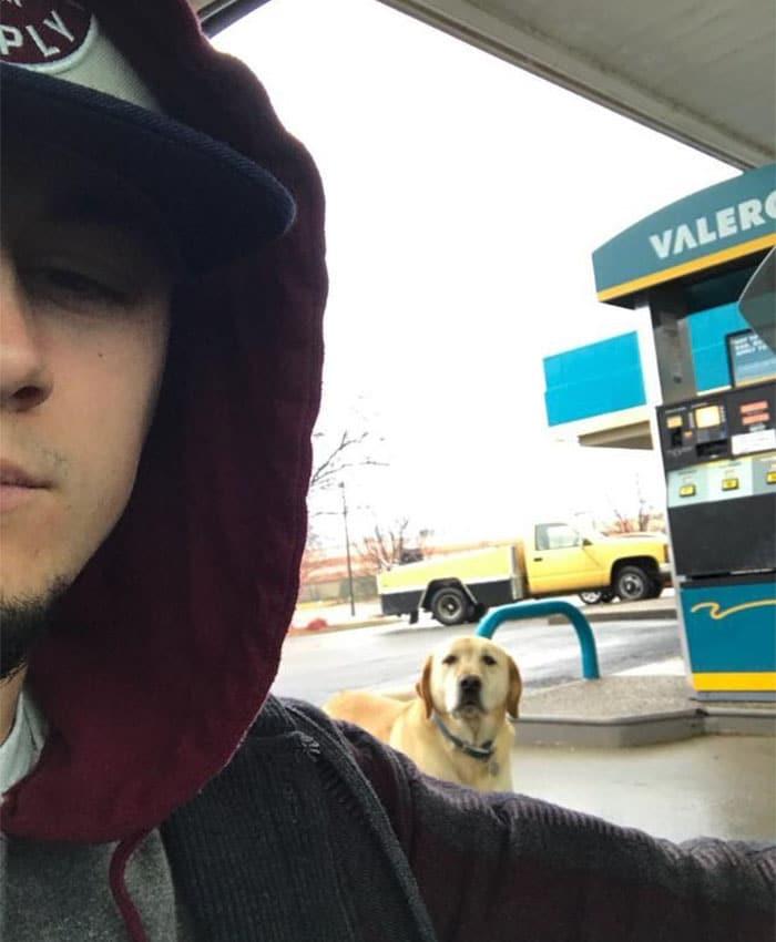 A srác csak segíteni akart a kóborló kutyán