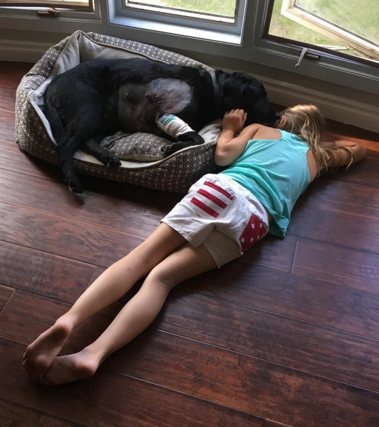 Születésüktől fogva együtt volt a lány és a kutyája