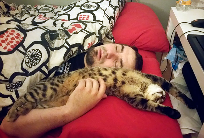 nem akartak macskát, de a legjobb barátok lettek