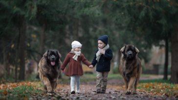 szívhez szóló fotó gyerekekről és kutyákról