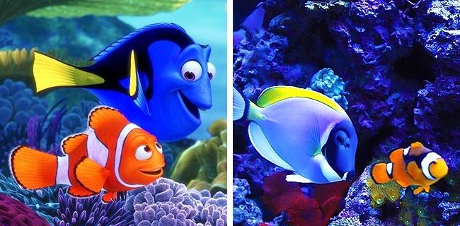 állatok rajzfilm karakterekre hasonlítanak