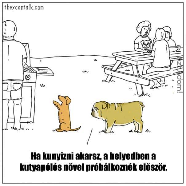 Ha az állatok beszélni tudnának