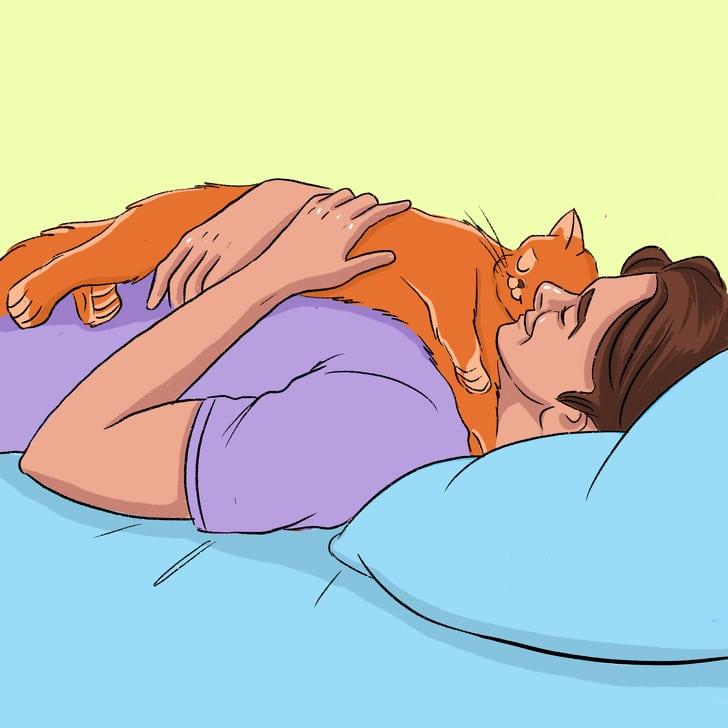 macskád azt mondja neked Szeretlek