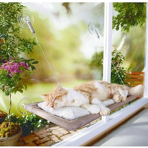 szuper termékek macskáknak