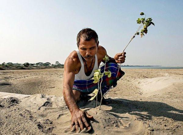 40 éve ez a férfi naponta ültetett egy fát