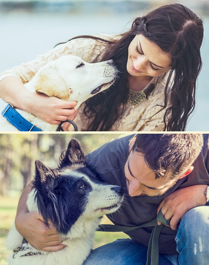 6 dolog amit a kutyák ki tudnak szagolni