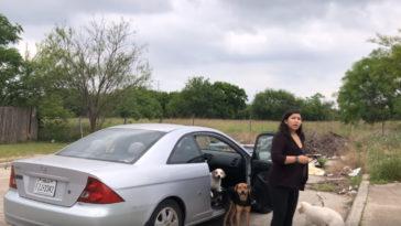 A nőt épp rajtakapják mikor négy kutyájától meg akar szabadulni