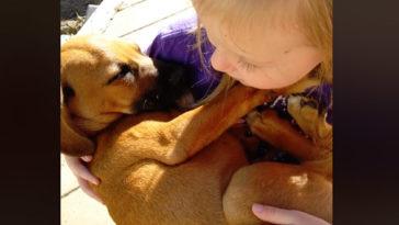 Altatódalt énekel a kislány a mentett kutyának