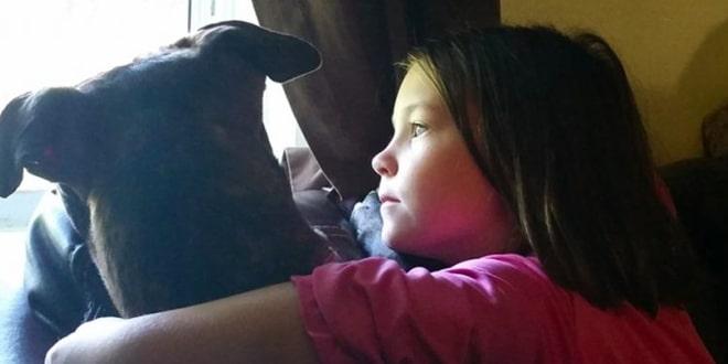 A kislány fel akarja vidítani a kutyát
