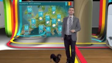 Egy tacskó zavarta meg az RTL Híradót