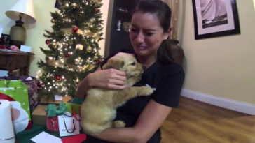 Nemrég vett végső búcsút beteg kutyájától