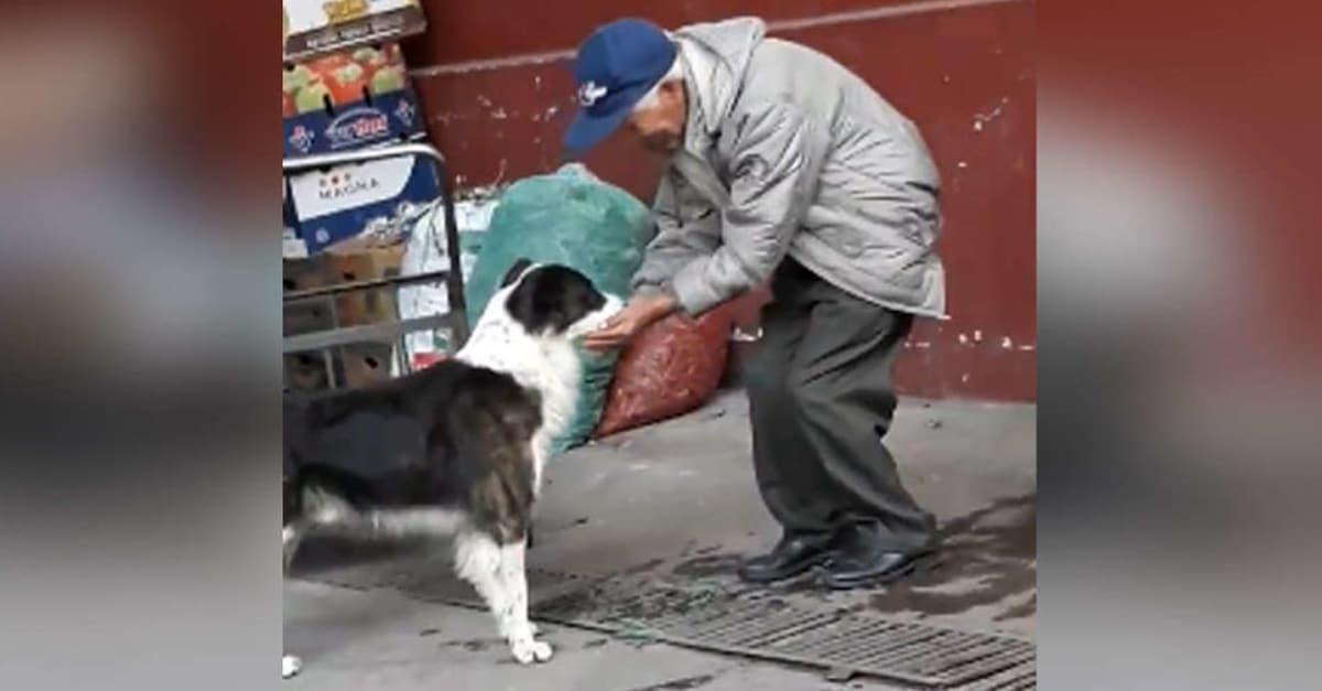 szomjas kutyát itató bácsi