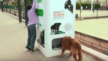 Ez az automata használt műanyag palackokért cserébe ad ételt a kóbor kutyáknak