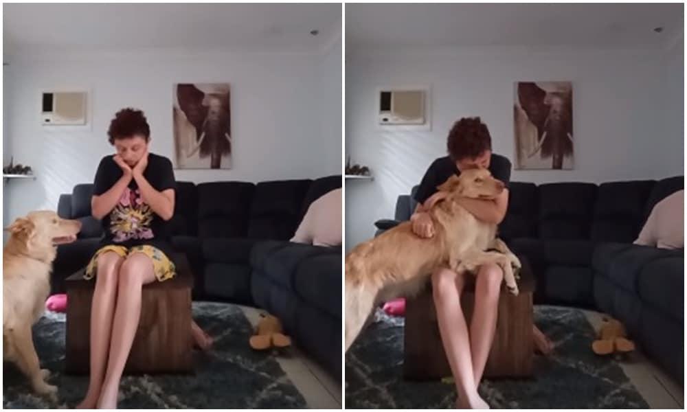 Így segít egy terápiás kutya egy autista pánikrohamán
