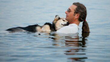Egy ember és kutya közötti barátság megható története
