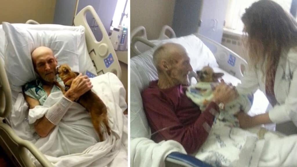 Kutyája gyógyította meg a súlyosan beteg idős bácsit