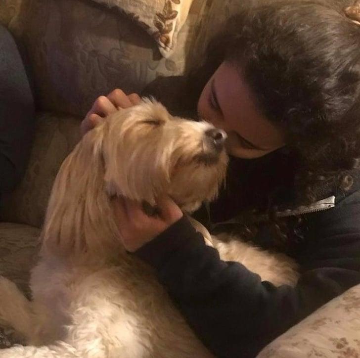 a kutyáknak csak szeretet kell10