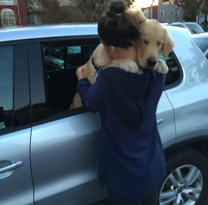 a kutyáknak csak szeretet kell7