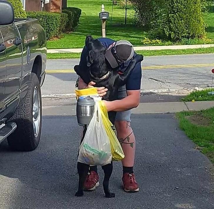 a kutyáknak csak szeretet kell9