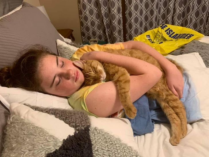 az állatok mindennél többre tartják a szeretetünket14