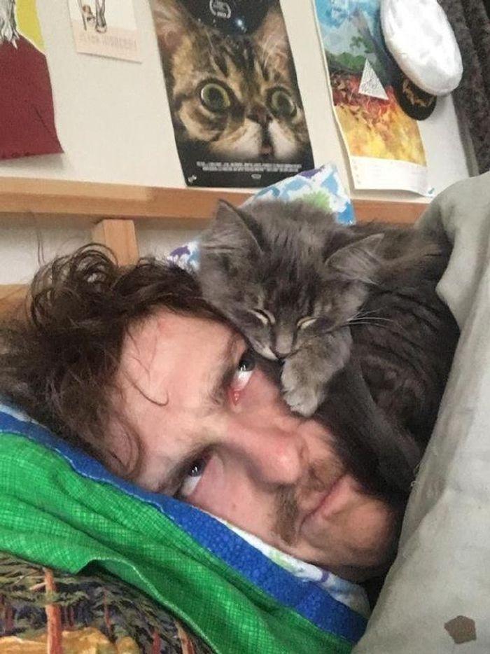 miért ne legyen macskád14