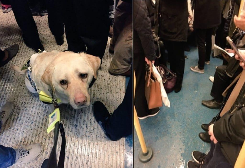 A vonat utasai nem adják át helyüket