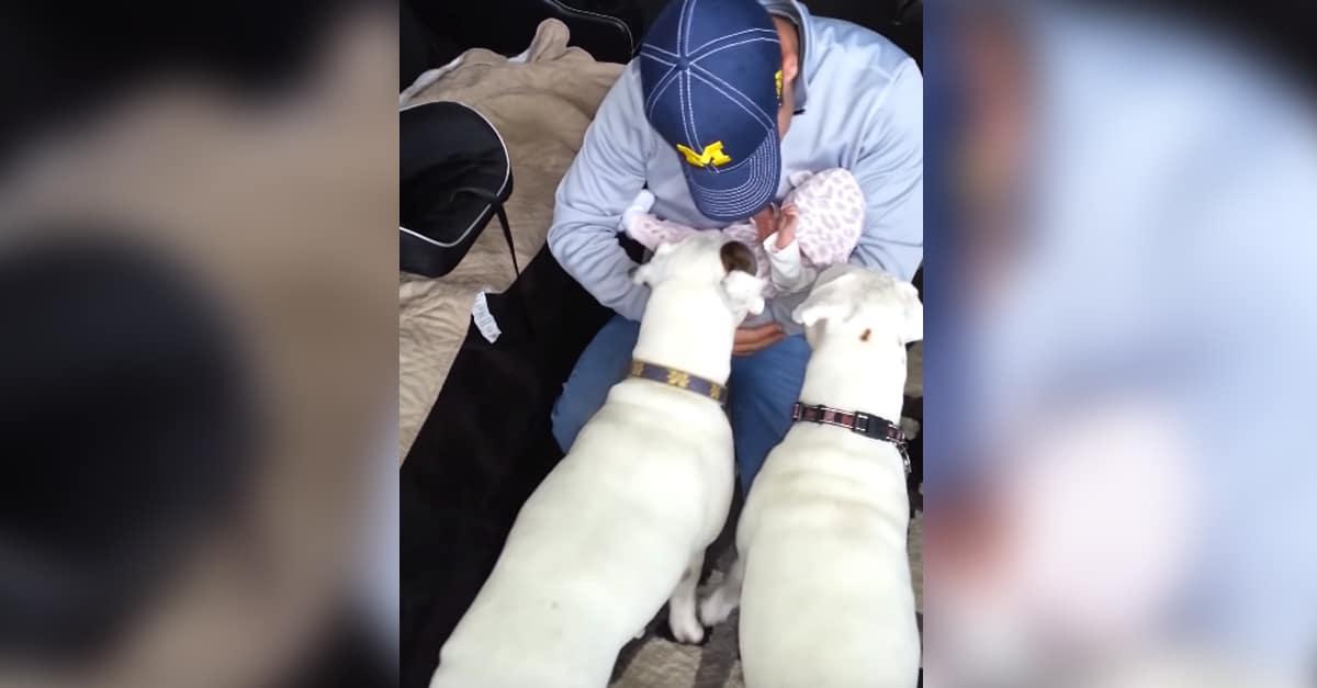 Az újszülött babával érkeznek haza a kórházból