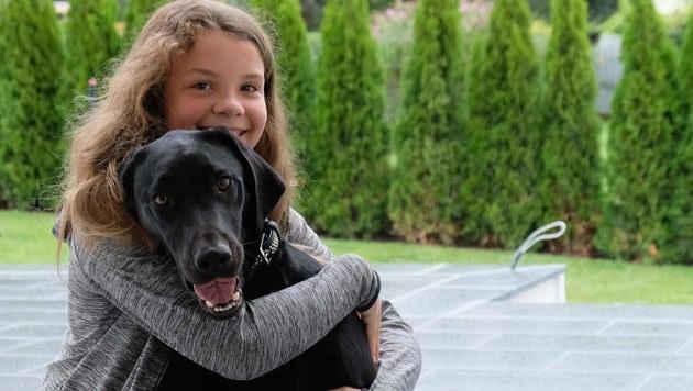 34 kilométerről hazatalált az elkóborolt kutya