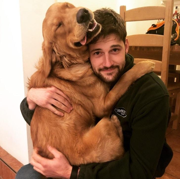 a kutyáknak csak szeretet kell1