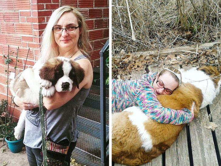 gazdi aki meglepődött, hogy mekkorára nőtt a kutyája10