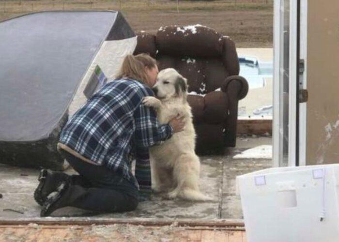 kutyát és családját elszakította a tornádó