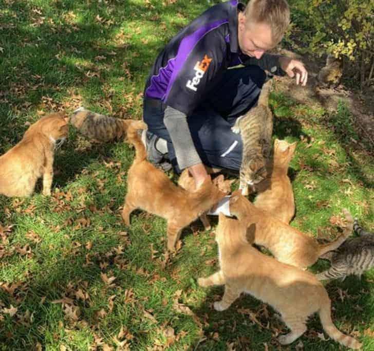 állatok emberekben találták meg a lelki társukat