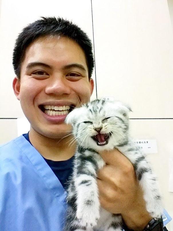 tündéri fotó az állatorvosi rendelőkből